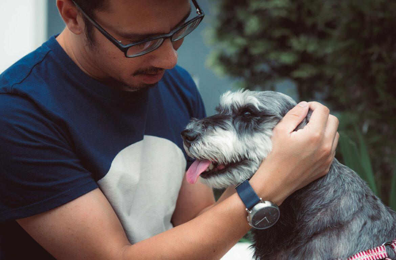 Man scratching a dog behind ear
