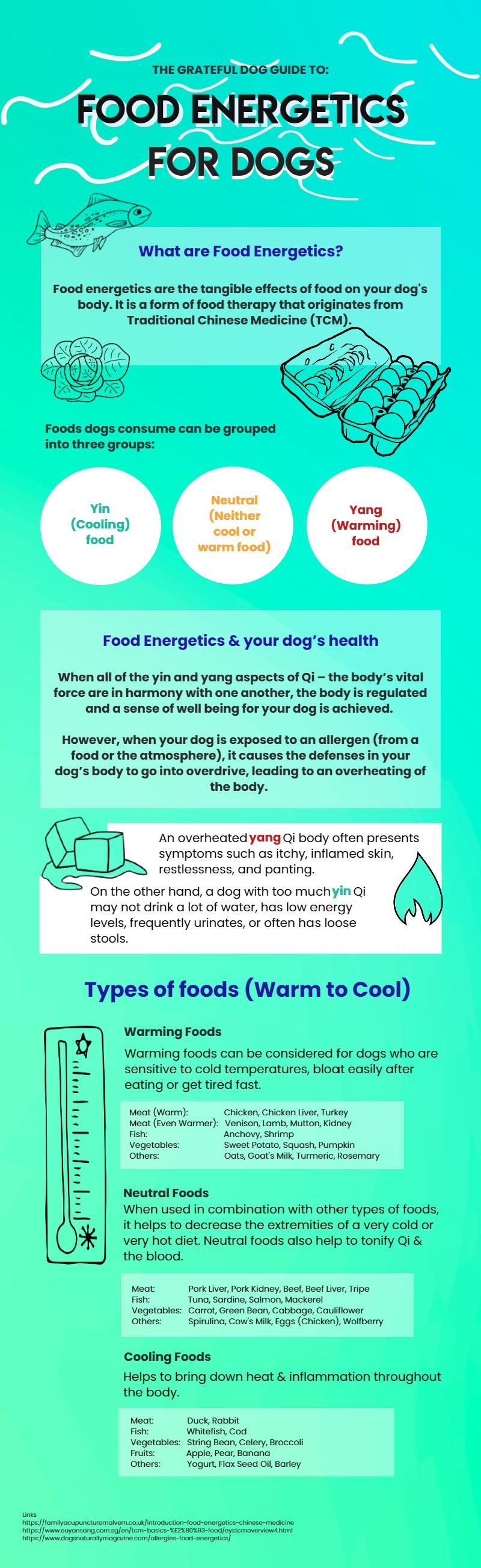 Food energetics infographic